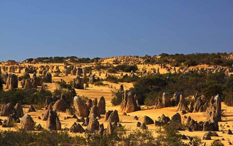Пустыня Пиннаклс. Национальный парк Намбунг (Nambung National Park)