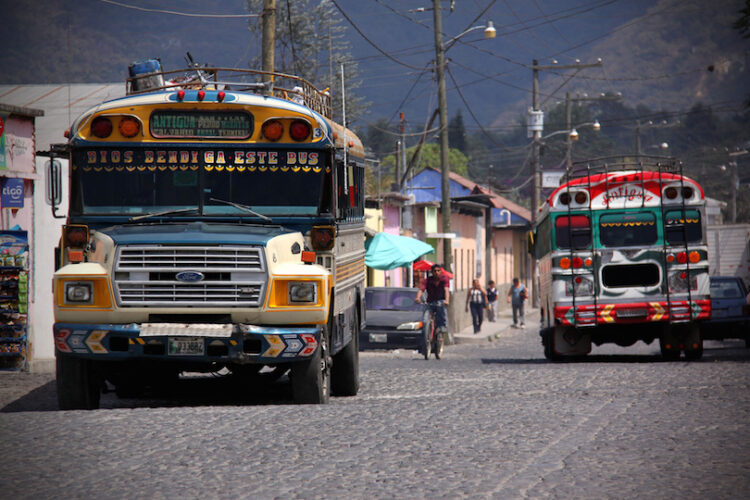 chicken_buses